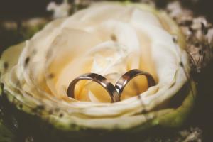 Hochzeitsfoto mit einer Rode und den Eheringen